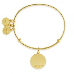 Alex and Ani Everything Happens For A Reason Charm Bangle - Shiny Gold Finish