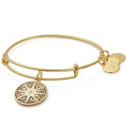 Alex and Ani Healing Love Color Infusion Charm Bangle - Shiny Gold Finish