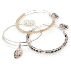 Alex and Ani Owl Art Infusion Set of 3 Bangles - Shiny Silver Finish