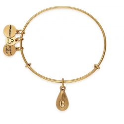 Alex and Ani June Drop Charm Bangle Bracelet - Rafaelian Gold Finish