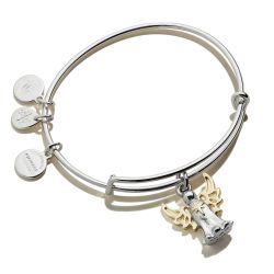 Alex and Ani Angel Two-Tone Charm Bangle Bracelet - Shiny Silver and Gold Finishes