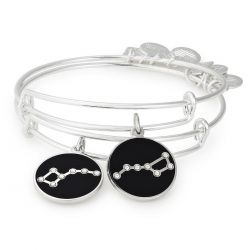 Alex and Ani Big and Little Dipper Set of 2 Charm Bangle Bracelets - Shiny Silver Finish