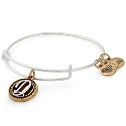 Alex and Ani Initial D Two-Tone Charm Bangle Bracelet - Rafaelian Gold and Silver Finish