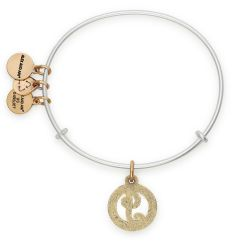 Alex and Ani Initial J Two-Tone Charm Bangle Bracelet - Rafaelian Gold and Silver Finish