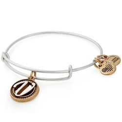Alex and Ani Initial V Two-Tone Charm Bangle Bracelet - Rafaelian Gold and Silver Finish
