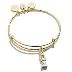 Alex and Ani Nutcracker Two-Tone Charm Bangle Bracelet - Shiny Gold and Silver Finishes