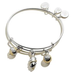 Alex and Ani Ornament Trio Two-Tone Charm Bangle Bracelet - Shiny Silver and Gold Finishes