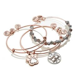 Alex and Ani Paws And Reflect Set of 3 Charm Bangle Bracelets - Rafaelian Rose Gold and Silver Finish