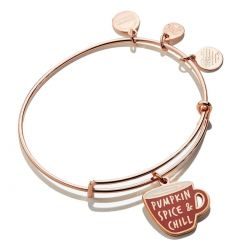 Alex and Ani Pumpkin Spice Color Infusion Charm Bangle Bracelet - Shiny Rose Gold Finish