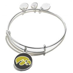 Alex and Ani University of Iowa Logo Color Infusion Charm Bangle Bracelet - Shiny Silver Finish