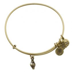 Alex and Ani Zest for Life Charm Bangle - Rafaelian Gold Finish