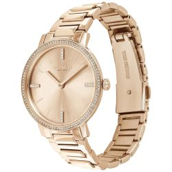 Ladies' COACH Audrey Rose-Gold Tone Crystal Accent Watch 14503354