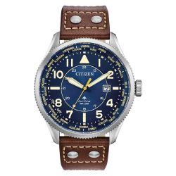 Men's Citizen Eco-Drive Promaster Nighthawk Blue Brown Watch BX1010-11L