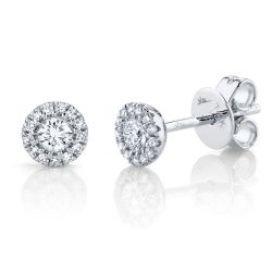 Shy Creation Diamond Halo Stud White Gold Earrings 1/4ctw