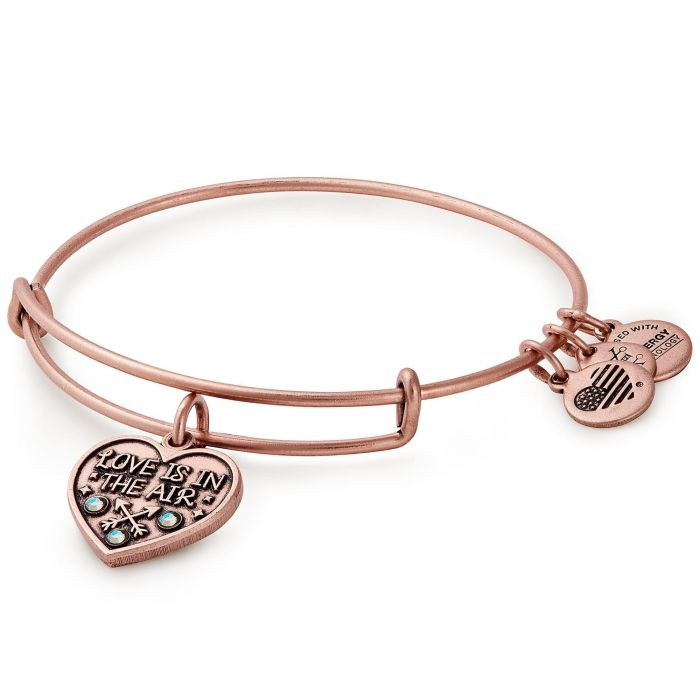 Alex and Ani Love is in the Ait Bracelet